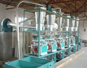 flour processing plant