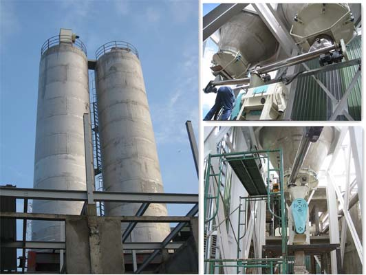 project of Sri Lanka flour storage silo